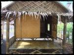bamboo bungalows mma phuket topteam